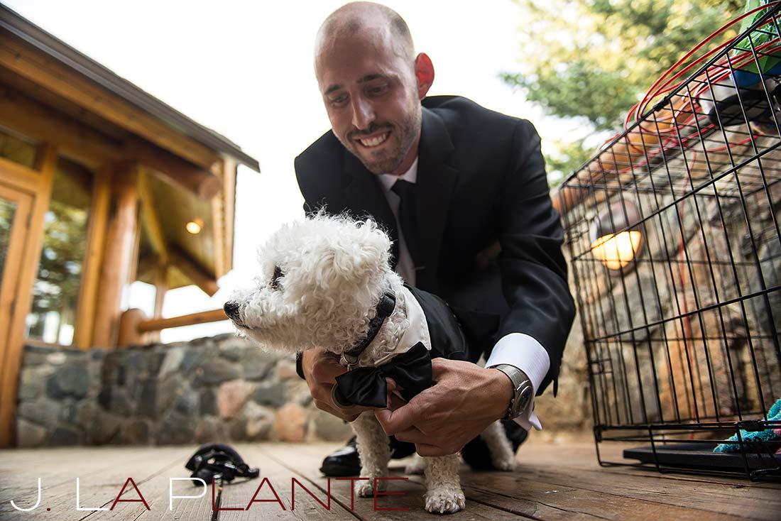 Wedding dog | Evergreen Lakehouse wedding | Evergreen wedding photographer | J La Plante Photo
