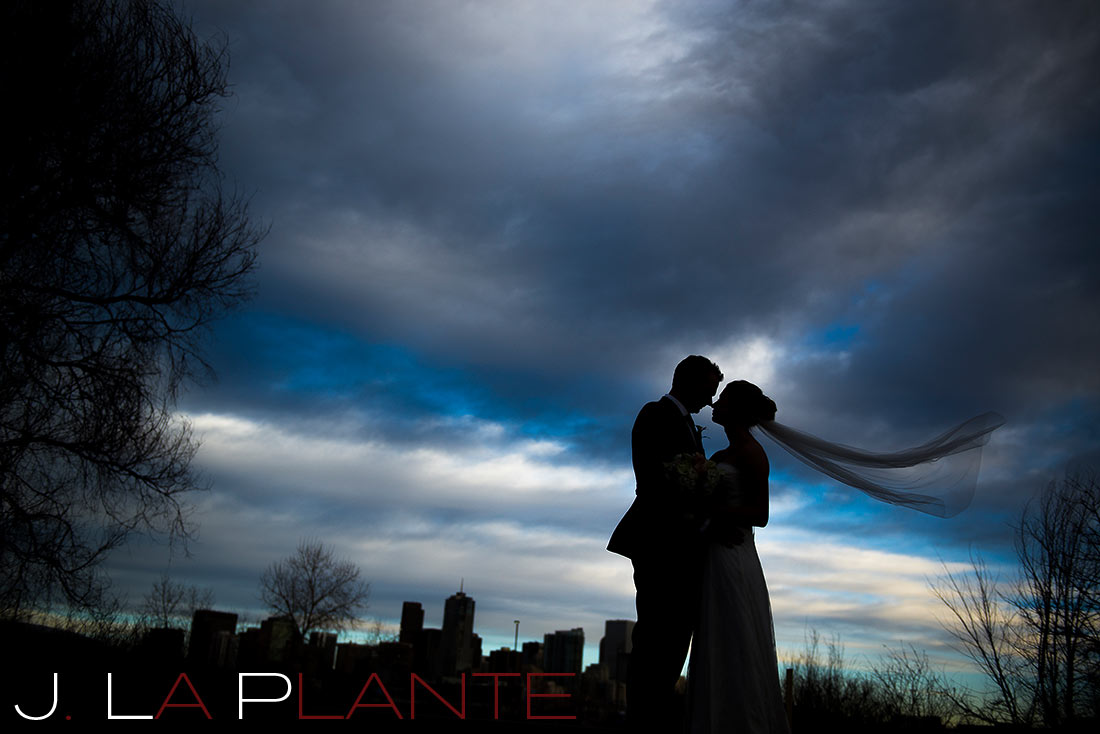 cool silhouette photo of bride and groom