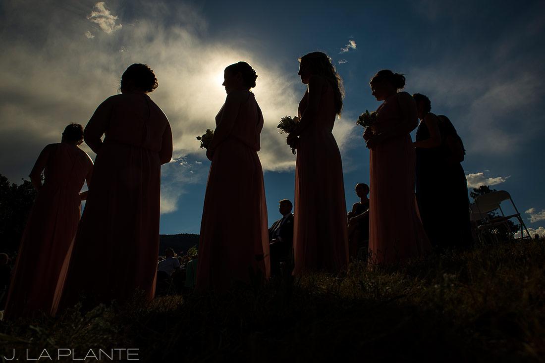 silhouette photo of bridesmaids