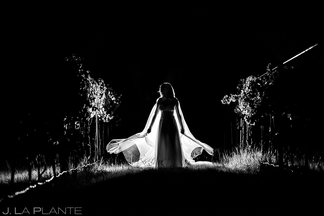 Bridal Portrait | Dallas Winery Wedding | Destination Wedding Photographer | J. La Plante Photo