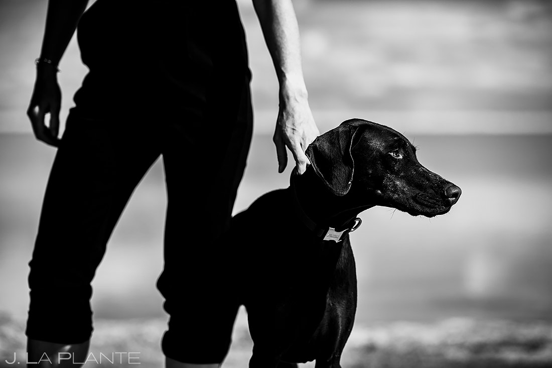 Engagement Shoot with Dog | Bonneville Salt Flats Engagement | Destination Wedding Photographer | J. La Plante Photo