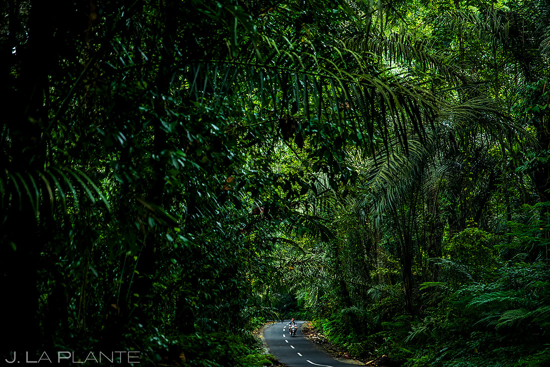Motorcycling Through the Jungle | Bali Indonesia | Travel Photography | J. La Plante Photo