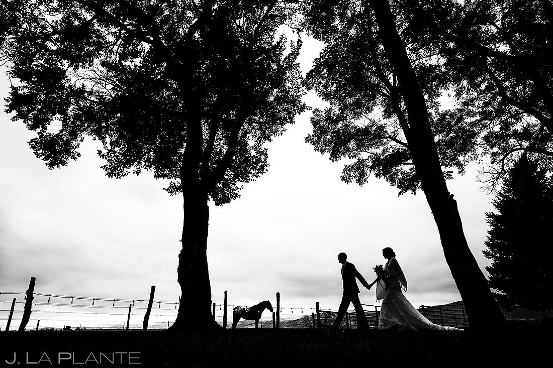 Bride and Groom with Horses | Shupe Homestead Wedding | Boulder Wedding Photographer | J. La Plante Photo