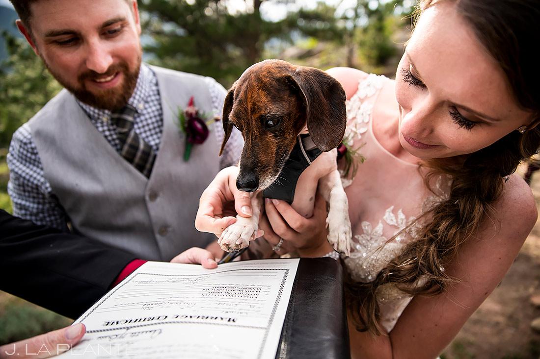 Dog Signing Marriage License | Rocky Mountain National Park Wedding | Estes Park Wedding Photographer | J. La Plante Photo