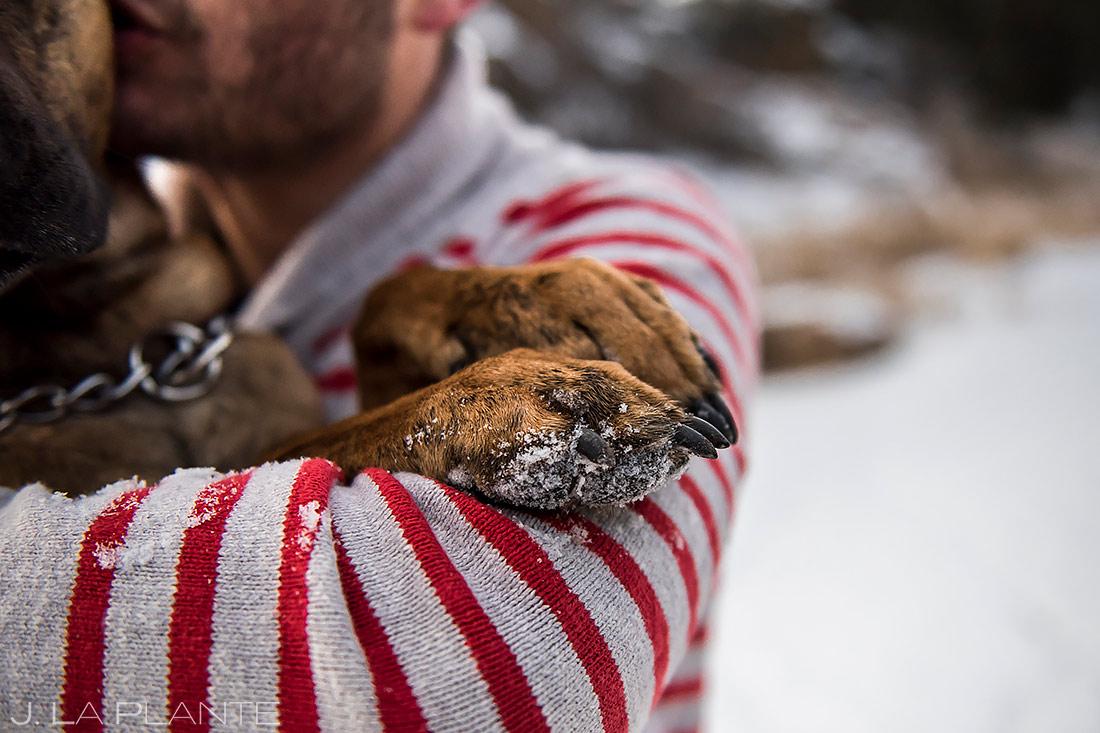 Engagement Shoots with Dogs | Golden Colorado Engagement | Golden Wedding Photographer | J. La Plante Photo